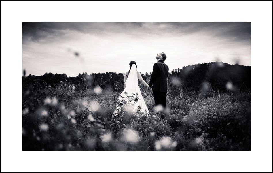 künstlerisches Portrait des Brautpaares